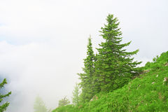 _ bavarianstadebersberg avlägsen för horisont för liggande för berg för munich inte sight för torn hålla ögonen på Arkivfoton