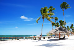 桑迪热带海滩Bavaro,蓬塔Cana,多米尼加共和国 库存图片