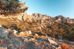 Bavella山 可西嘉岛法国 免版税库存照片
