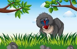 Baviaan die in het bos leven royalty-vrije illustratie