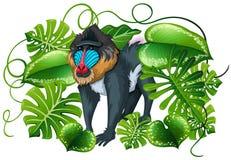 Baviaan in groene bladeren stock illustratie