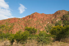 Baviaanskloof mountain. Red mountains in South Africa's Baviaanskloof Stock Photography