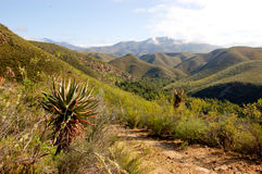 Baviaanskloof Mountains Royalty Free Stock Photos