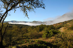 Baviaanskloof wilderness South Africa. Beautiful landscape of the Baviaanskloof wilderness in South Africa with low lying morning mist Stock Photos
