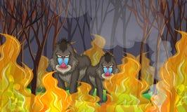 Bavianen in het Wildfire Bos vector illustratie
