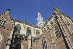 Bavo Church in Haarlem. Medieval Bavo Church in center of Haarlem royalty free stock photos