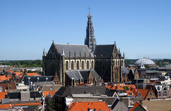 Bavo church in Haarlem. Bavo church and roofs of city Haarlem in the Netherlands Stock Images
