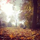 Bawarska jesień Zdjęcia Stock
