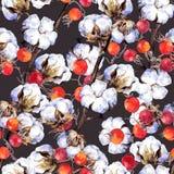 Bawełnianej rośliny gałąź, czerwone jagody deseniowy target101_0_ akwarela Fotografia Stock