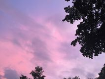 Bawełien chmury Obrazy Royalty Free
