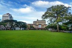 Bawełniany Jedwabniczy drzewo Merdeka w Kuching i plac Fotografia Royalty Free