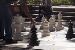 Bawić się gigantycznego szachy w Hyde parku na jesieni popołudniu obrazy royalty free