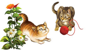 Bawić się koty. Figlarka z piłką. Obrazy Royalty Free