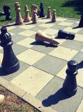 Bawić się szachową grę w parku obraz stock