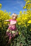 Bawić się w polu kwiaty Fotografia Stock
