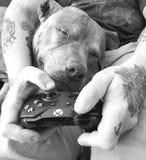 Bawić się Xbox z mój tatą obraz royalty free
