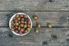 A bawl of gooseberries on a wooden surface Royalty Free Stock Images