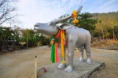 Bawolia statua Obraz Royalty Free