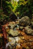 baxter strumyka Maine parkowy stan zdjęcie stock