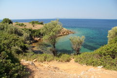 Bay of the Aegean Sea. Greece. August Royalty Free Stock Image
