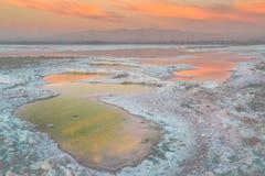 Bay Area Salt Ponds Sunset. Stock Images