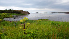 Bay of Borgarnes in Iceland Stock Image
