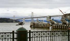 Bay bridge to Treasure Island Stock Images