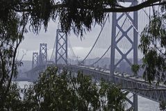 Bay Bridger Through Trees. Hidden Bay Bridge through the trees Royalty Free Stock Photo