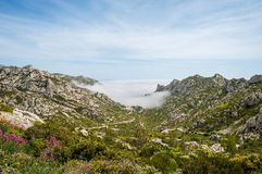 The bay Calanque Sormiou near Marseille in France Royalty Free Stock Photos