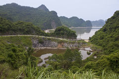 Bay at Cat Ba island, Royalty Free Stock Image