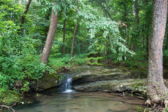 Bay creek, Shawnee National Forest, Illinois, USA Stock Photography