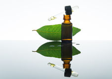 Bay essential oil, bay oil, bay leaf, amber glass bottle, dropper Royalty Free Stock Photography