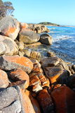 Bay of Fires beautiful day Royalty Free Stock Images