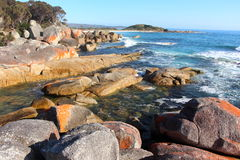 Bay of Fires beautiful day Stock Images