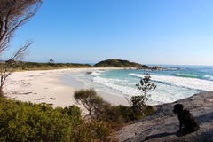 Bay of Fires beautiful day Royalty Free Stock Photography