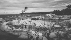 Bay Of Fires in Binalong Bay. Bay Of Fires, Binalong Bay during the day in Tasmania Stock Photography