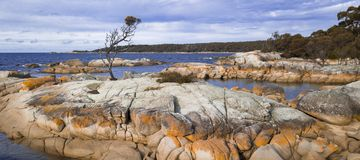 Bay Of Fires in Binalong Bay. Tasmania Royalty Free Stock Images