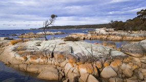 Bay Of Fires in Binalong Bay. Tasmania Stock Images
