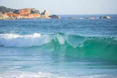 Bay of Fires coast Tasmania Royalty Free Stock Image