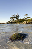 Bay of Fires late light landscape, Tasmania Stock Image