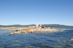 Bay of Fires rocks along coastline Tasmania Stock Photography