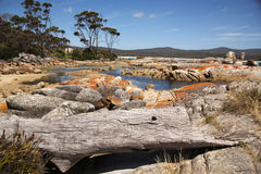 Bay of fires scenics Stock Photography