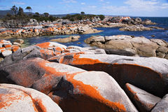Bay of fires scenics Royalty Free Stock Photos