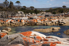 Bay of fires scenics Royalty Free Stock Image