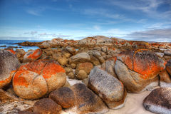 Bay of Fires, Tasmania. Scenic rocky seasape at Bay of Fires in Tasmania Stock Photos
