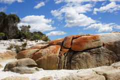 Bay of Fires, Tasmania, Australia Stock Photography