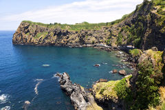 Bay and fishery harbor at Capelas, Sao Miguel, Azores Royalty Free Stock Images