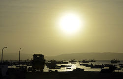 Bay Full of Fishing boats with Setting Sun Royalty Free Stock Photo