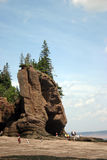 Bay of Fundy. At low tide Royalty Free Stock Photography