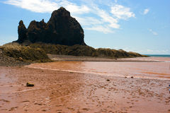 Bay Of Fundy Stock Photos